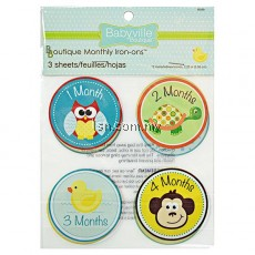 Gender Neutral Designs Monthly Iron Ons